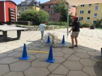 2021-07-23_Hundestaffel Roterplatz (14)